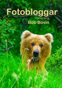 Fotobloggar 2011-2013 (e-bok) av
