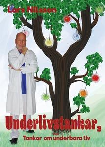Underlivstankar Del 2 (e-bok) av Lars Nilsson