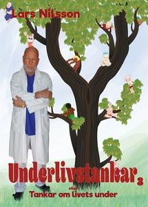 Underlivstankar Del 3 (e-bok) av Lars Nilsson