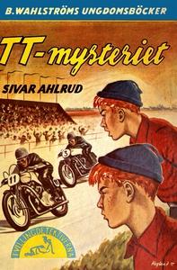 Tvillingdetektiverna 13 - TT-mysteriet (e-bok)