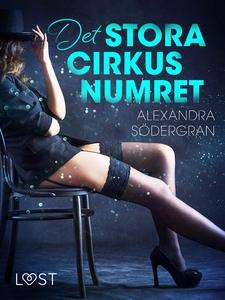 Det stora cirkusnumret (e-bok) av Alexandra Söd