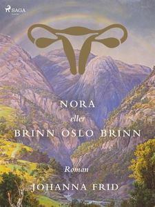 Nora eller Brinn Oslo brinn (e-bok) av Johanna