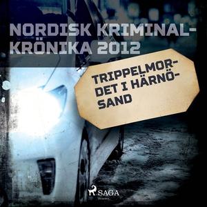Trippelmordet i Härnösand (ljudbok) av Diverse