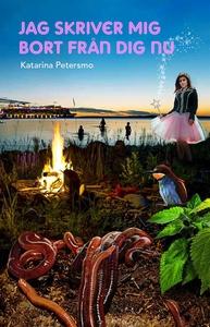 Jag skriver mig bort från dig nu (e-bok) av Kat