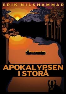 Apokalypsen i Storå (ljudbok) av Erik Nilshamma