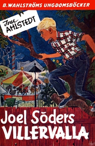 Joel Söder 5 - Joel Söders Villervalla (e-bok)