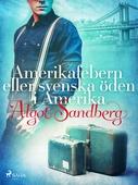 Amerikafebern eller Svenska öden i Amerika