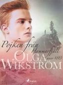 Pojken från Hammarfjäll : anno 1813