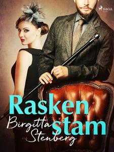 Raskenstam (e-bok) av Birgitta Stenberg