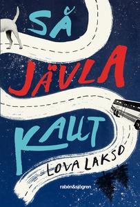 Så jävla kallt (e-bok) av Lova Lakso