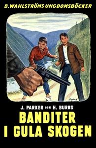 Djungelbröderna 2 - Banditer i Gula skogen (e-b