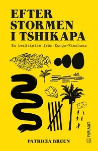 Efter stormen i Tshikapa (e-bok) av Patricia Br