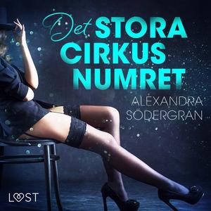 Det stora cirkusnumret (ljudbok) av Alexandra S