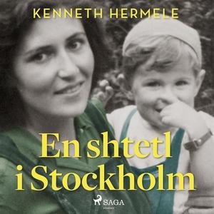 En shtetl i Stockholm (ljudbok) av Kenneth Herm