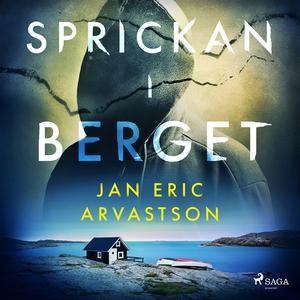 Sprickan i berget (ljudbok) av Jan Eric Arvasts