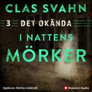 I nattens mörker (ljudbok) av Clas Svahn