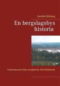 En bergslagsbys historia: Vintermossen från sve