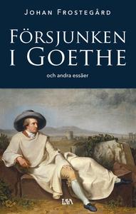 Försjunken i Goethe och andra essäer (e-bok) av