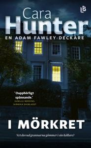 I mörkret (e-bok) av Cara Hunter
