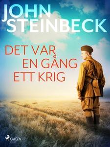 Det var en gång ett krig (e-bok) av John Steinb