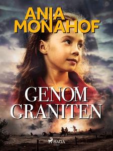 Genom graniten (e-bok) av Ania Monahof
