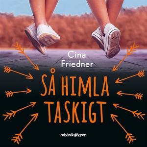 Så himla taskigt (ljudbok) av Cina Friedner