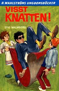 Knatten 9 - Visst Knatten! (e-bok) av Stig Malm