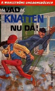 Knatten 10 - Vad Knatten nu då! (e-bok) av Stig