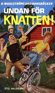 Knatten 11 - Undan för Knatten! (e-bok) av Stig