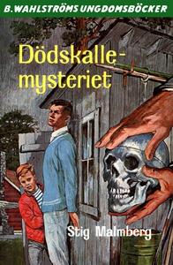 Dödskalle-mysteriet (e-bok) av Stig Malmberg