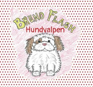 Bruno Flash Hundvalpen (e-bok) av Lisa Bengths