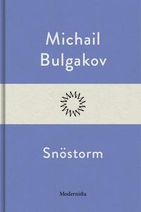 Snöstorm (e-bok) av Michail Bulgakov