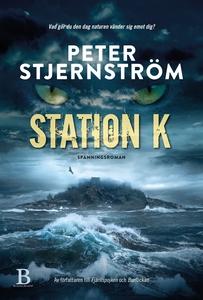 Station K (e-bok) av Peter Stjernström