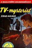 Tvillingdetektiverna 15 - TV-mysteriet