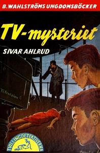 Tvillingdetektiverna 15 - TV-mysteriet (e-bok)