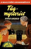 Tvillingdetektiverna 17 - Tåg-mysteriet