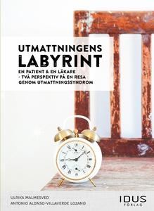 Utmattningens labyrint : en patient & en läkare
