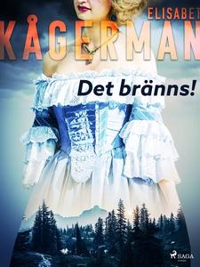 Det bränns! (e-bok) av Elisabet Kågerman