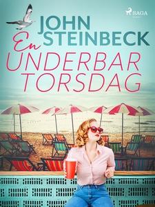 En underbar torsdag (e-bok) av John Steinbeck