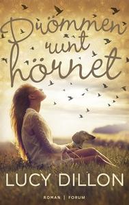 Drömmen runt hörnet (e-bok) av Lucy Dillon