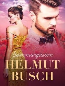 Sommargästen (e-bok) av Helmut Busch