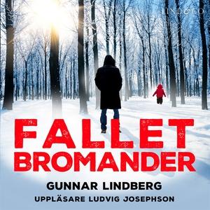 Fallet Bromander (ljudbok) av Gunnar Lindberg