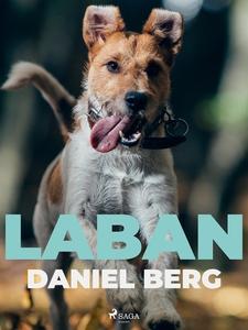 Laban (e-bok) av Daniel Berg