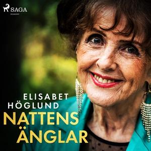 Nattens änglar (ljudbok) av Elisabet Höglund