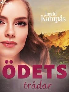 Ödets trådar (e-bok) av Ingrid Kampås