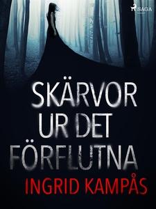 Skärvor ur det förflutna (e-bok) av Ingrid Kamp