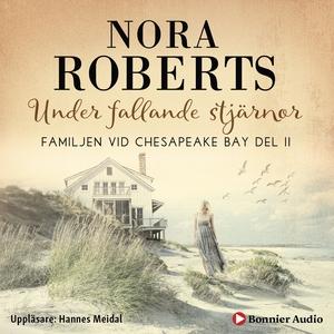 Under fallande stjärnor (ljudbok) av Nora Rober