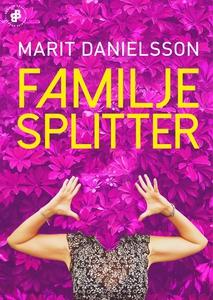 Familjesplitter (e-bok) av Marit Danielsson