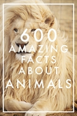 600 Amazing Facts About Animals