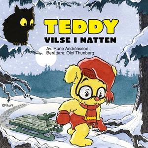 Teddy vilse i natten (ljudbok) av Rune Andréass